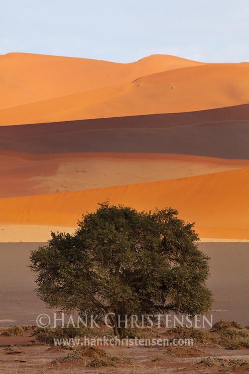 The giant sand dunes of Namibia turn many shades of red and orange under shifting clouds, Namib-Naukluft National Park, Namibia.