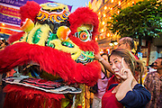 "09 FEBRUARY 2013 - BANGKOK, THAILAND:  Lion Dancers perform on Yaowarat Road in the heart of Chinatown in Bangkok on Chinese New Year. Bangkok has a large Chinese emigrant population, most of whom settled in Thailand in the 18th and 19th centuries. Chinese, or Lunar, New Year is celebrated with fireworks and parades in Chinese communities throughout Thailand. The coming year will be the ""Year of the Snake"" in the Chinese zodiac.   PHOTO BY JACK KURTZ"