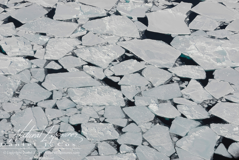 The Beaufort Sea ice pack breaks into chunks during late April 2007.