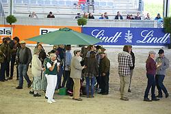 Reiten, Pferdesport, Schaubild, Irische Impressionen<br /> Aachen - Europameisterschaften 2015<br /> Zuchttag<br /> © www.sportfotos-lafrentz.de/Stefan Lafrentz