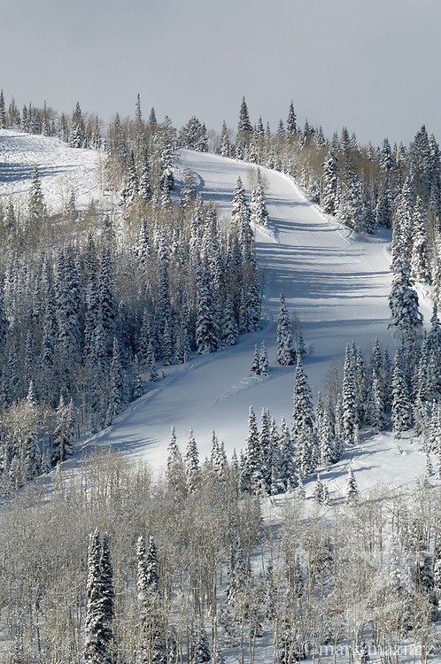 fresh snow on groomed Stargazer run at Deer Valley Resort