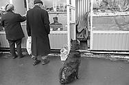 Mosca, marzo 2000: mercato, clienti e cane - market, customers and dog