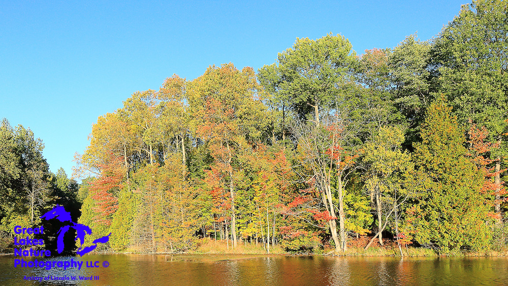 A colorful cove along the Manistee River in Wexford County Michigan.