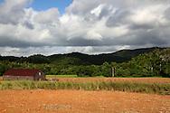 Farm near Vinales, El Moncada, Pinar del Rio, Cuba.