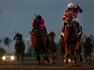 Gallop Pegasus