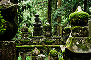 Moss covered momuments in the towering cedar forest at the Okuno-in cemetary.