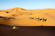 Saharan landscape, Hassilabied village, Southern Morocco, 2016-04-13. <br />