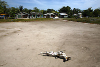 A dog suns itself in Orika, the local village on Isla Grande, one of the islands in an archipelago known as Islas del Rosario, about 35km southwest of Cartagena, on Colombia's Caribbean coast on January 2, 2009. (Photo/Scott Dalton)