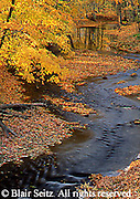 PA landscapes, Fall leaves, Stream, Perry Co., Pennsylvania