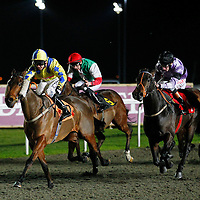 Insolenceofoffice and Graham Lee winning the 6.10 race