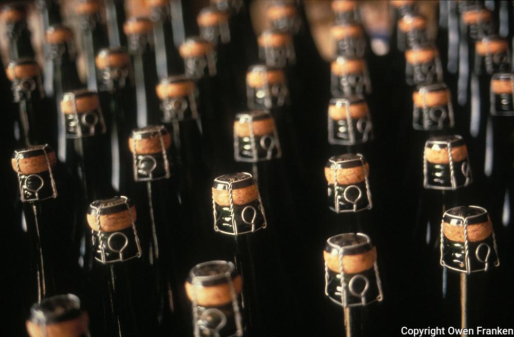 Champagne corks- Photograph by Owen Franken - Photograph by Owen Franken