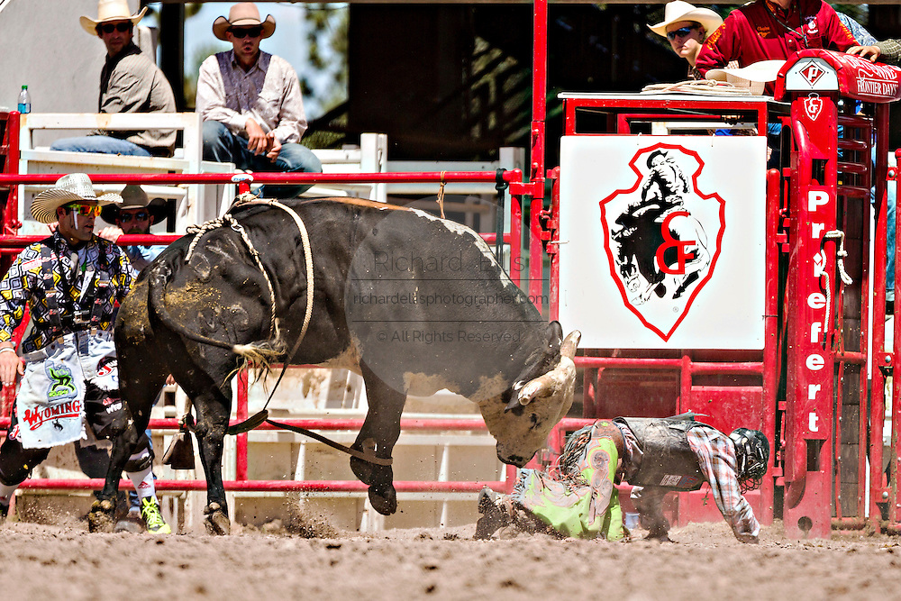 Bull rider Tanner Bothwell is rammed by a bull after being tossed during the Bull Riding finals at the Cheyenne Frontier Days rodeo in Frontier Park Arena July 26, 2015 in Cheyenne, Wyoming. Frontier Days celebrates the cowboy traditions of the west with a rodeo, parade and fair.
