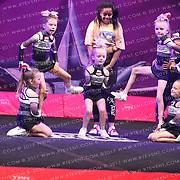 5066_Kick Twist Cheerleading - Kick Twist Cheerleading Rose