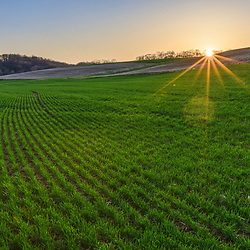 A hay field at sunset in spring in Franklin Township, Pennsylvania.