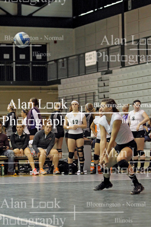 21 September 2013:  Maddie Greybar during an NCAA women's division 3 Volleyball match between the Lincoln Christian University Lady Lynx and the Illinois Wesleyan  University Titans in Shirk Center, Bloomington IL
