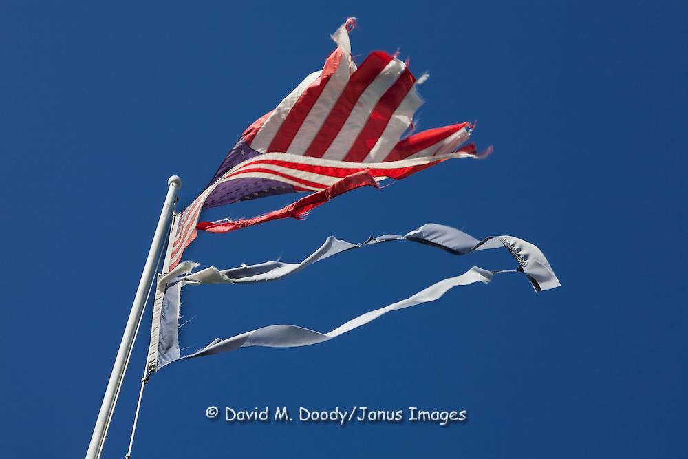 Shredded flags flying at the Rowan Memorial Home, Sweet Springs, West Virginia May 2011