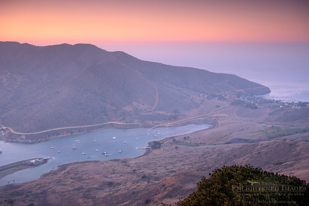 Overlooking Catalina Harbor at sunset, Two Harbors, Catalina Island, California