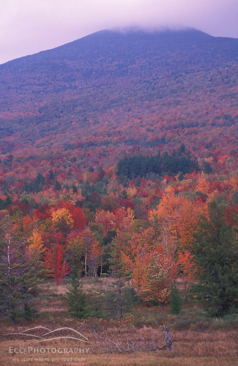 Lincoln, VT.Fall in the Green Mountain National Forest.  Clouds cover Mt. Abraham.  Lincoln Gap Road.