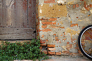 Tuscan scene with brick, wood door, plant and bicycle