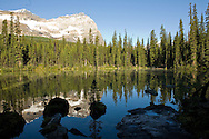 Views of Lake O'Hara and the surrounding alpine terrain in Yoho National Park, British Columbia, Canada