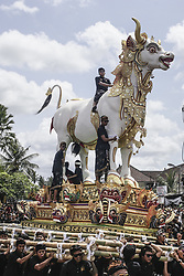 December 18, 2018 - Bali, Indonesia - A white-bull sarcophagus being carried by Balinese to cemetery during royal cremation ceremony known as Pelebon in Gianyar, Bali, Indonesia on December 18 2018. The ritual is to honor the deceased, Ida I Gusti Ngurah Djelantik XXIV, an elder of Puri Ageng Blahbatuh royal family. (Credit Image: © Johanes Christo/NurPhoto via ZUMA Press)