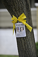 The infamous missing poster for Amanda Berry hangs on a tree, under a yellow ribbon, at her sister's home on West 129th Street in Cleveland on the day Amanda Berry returned back home on Wednesday, May 8, 2013, in Cleveland, Ohio..Amanda Berry, Michelle Knight and Gina DeJesus were held captive by Ariel Castro for 10 years in a house on Seymour Avenue. © David Richard