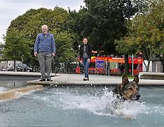 Finn the police dog (Finn's Law) meets Minister, Edinburgh, 6 September 2019