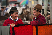 Quichua Indian men<br /> Calpi animal market<br /> Parish of Riobamba, Chimborazo Province<br /> Andes<br /> ECUADOR, South America