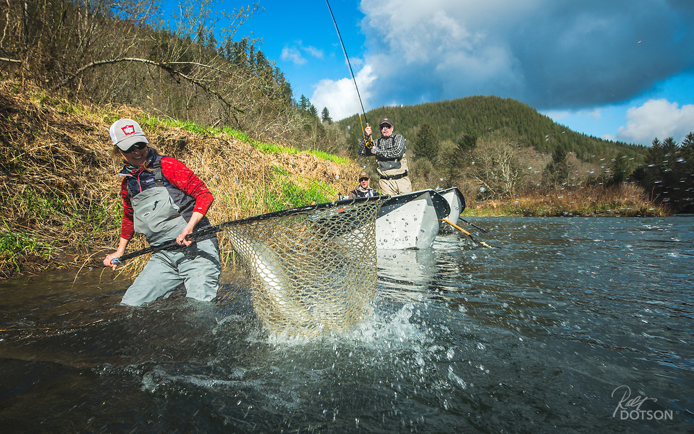 "Guide Kate Taylor nets a not to happy 34 1/2"" hen steelhead for a very happy J.O. on a coastal Oregon river."