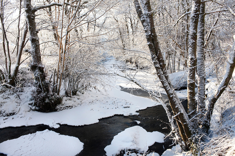 The Water of Gregg, Barr, Ayrshire in winter