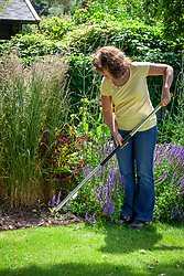 Hoeing weeds in a summer border with a hoe