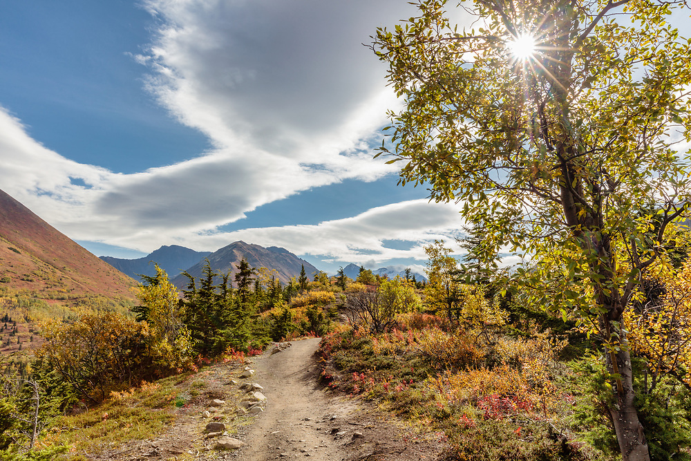 View of autumn colors and Chugach Mountains from South Fork Eagle River trail in Southcentral Alaska. Afternoon.