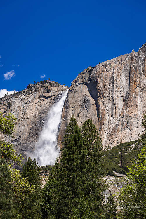 Yosemite Fall, Yosemite National Park, California USA