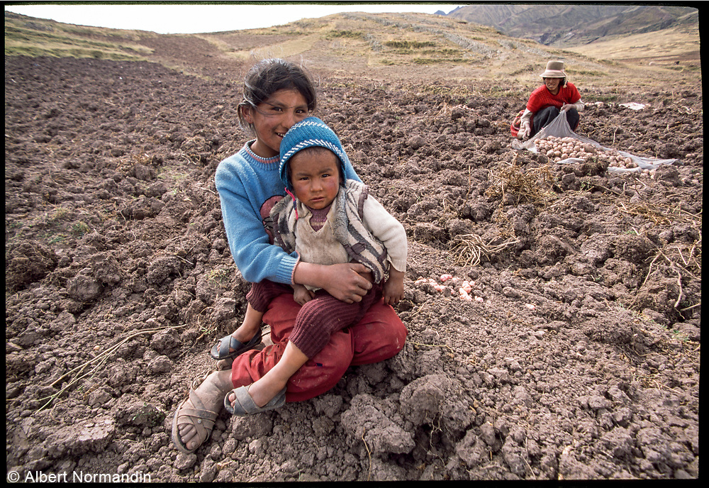 Potato farmers in the mountains, Peru, 2003