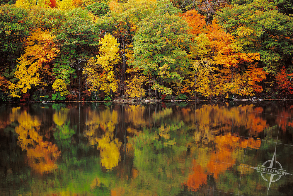 Autumn trees reflected in glassy lake.