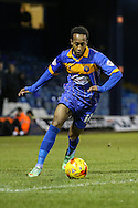 Cameron Gayle of Shrewsbury Town during the Sky Bet League 2 match at Kenilworth Road, Luton<br /> Picture by David Horn/Focus Images Ltd +44 7545 970036<br /> 08/01/2015