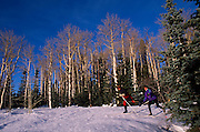 Cross-country skiers, East Rim Viewpoint, No. Rim Nordic Ctr., Grand Canyon National Park, Arizona..Media Usage:.Subject photograph(s) are copyrighted Edward McCain. All rights are reserved except those specifically granted by McCain Photography in writing...McCain Photography.211 S 4th Avenue.Tucson, AZ 85701-2103.(520) 623-1998.mobile: (520) 990-0999.fax: (520) 623-1190.http://www.mccainphoto.com.edward@mccainphoto.com.