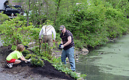 From left, Lukas Ricciardi and Jeff Warner, of Newtown, Pennsylvania lay mulch during a community cleanup of Lake Afton to provide some relief for the algae-plagued and mucky man made lake Saturday, May 6, 2017 at Lake Afton in Yardley, Pennsylvania. (WILLIAM THOMAS CAIN / For The Philadelphia Inquirer)