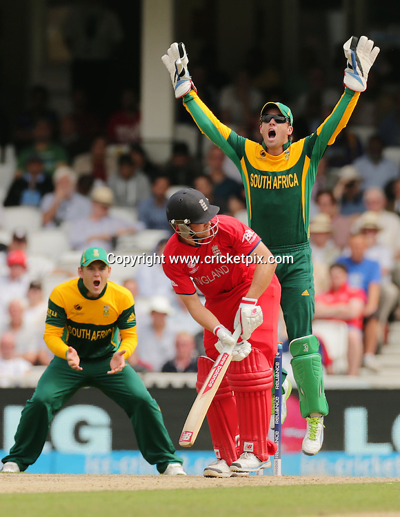 Jonathan Trott survives an lbw shout by keeper AB de Villiers during the ICC Champions Trophy semi-final between England and South Africa at The Oval, London. Photo: Graham Morris/cricketpix.com (Tel: +44 (0)208 969 4192; Email: graham@cricketpix.com) 19/06/13
