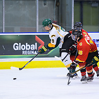 3rd year forward Emma Waldenberger (9) of the Regina Cougars in action during the Women's Hockey Home game on November 25 at Co-operators arena. Credit: Arthur Ward/Arthur Images