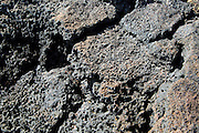 Close up of air holes in rock formed from volcanic lava flow, Fuerteventura, Canary Islands, Spain