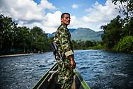 """Las FARC (Fuerzas Armadas Revolucionarias de Colombia) son las guerrillas más antiguas de América Latina, y han estado peleando por más de 50 años en las selvas de Colombia en contra del gobierno. Durante los últimos 52 años desde su iniciación, han existido con cautela en la selva, durmiendo en camas improvisadas, cambiando de ubicación cada dos noches y caminando largas distancias marchando en la selva tropical.<br /> <br /> Durante los últimos cuatro años los rebeldes y el gobierno se han concentrado en negociaciones encaminadas a resolver el conflicto armado del país, mientras que un pequeño grupo de negociadores se dirigió a La Habana / Cuba, los rebeldes han permanecido ocultos en las selvas colombianas.<br /> <br /> Incluso en medio de las negociaciones las bombas son una amenaza constante. Varios líderes de las FARC han sido asesinados por el gobierno colombiano bombardeando sus lugares.<br /> <br /> Los rebeldes tienen un amplio conocimiento sobre la selva y son una mezcla de diferentes orígenes étnicos y sociales: agricultores, académicos, indígenas, afro decendientes y mestizos. Adicionalmente, el 40% de las FARC son mujeres. En las filas son iguales, tanto hombres como mujeres trabajan hombro con hombro. Dentro del campo, hombres y mujeres tienen tareas y misiones complejas. De las operaciones radiales a las funciones de combate, todas trabajan de igual a igual, no hay discriminación racial, social o de género.<br /> <br /> El país votó el referéndum para validar el proceso de paz y los rsultados dieron como ganador al """"NO"""", un duro golpe a las guerrillas de las FARC, que reaccionaron devastadas, decepcionadas por lo que esperaban sería el apoyo de todo un país y se estaba convirtiendo en lo que podría haber sido el final del proceso de negociación, el país estaba a un paso de regresar a la guerra.<br /> <br /> El proceso de diálogo y negociaciones de paz entre las guerrillas de las FARC y el gobierno colombiano continúa avanzando, el presidente colombia"""