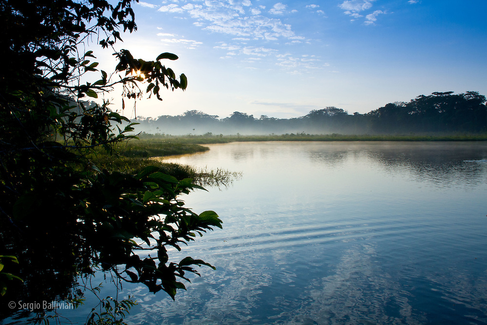 Sunrise in the jungle on an oxbow lake next to the Tambopata River in Tambopata NP in the Peruvian Amazon.