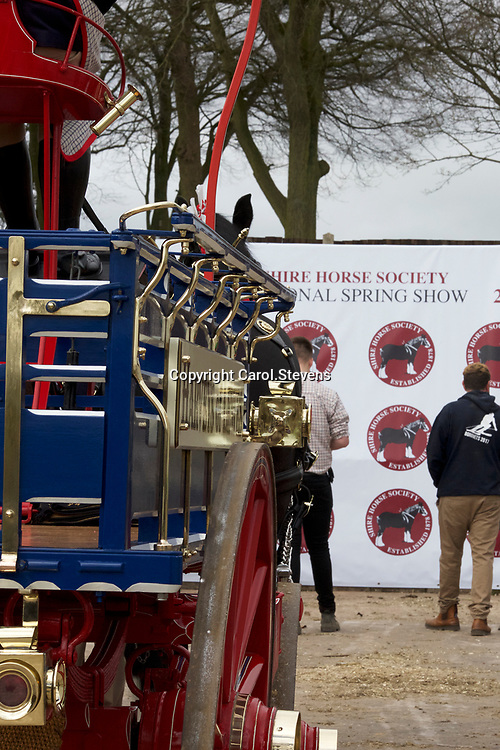 Shire Horse Society Spring Show 2017 Around the Showground