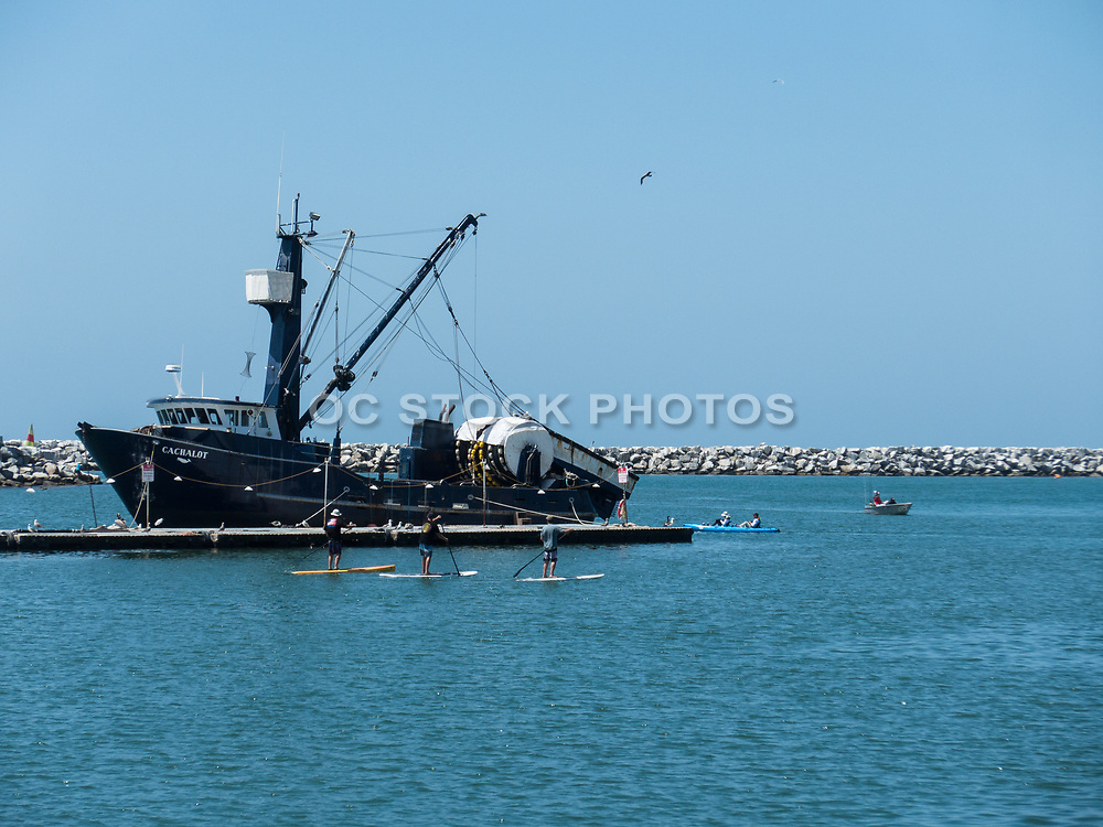 Everingham Bros. Bait Co. Dropping Off Bait At Dana Point Bait Barge