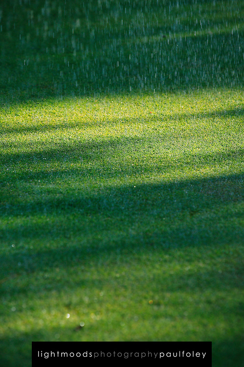 Recycled Water Spray on Grass