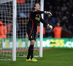 Liverpool's Simon Mignolet - Photo mandatory by-line: Alex James/JMP - Mobile: 07966 386802 - 23/11/2014 - Sport - Football - London -  - Crystal palace  v Liverpool - Barclays Premier League