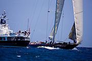 Velsheda sailing in the 2010 Antigua Classic Yacht Regatta, Windward Race, day 4.