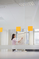 Woman working in office at presentation board side view