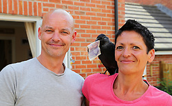 "EXCLUSIVE: A COUPLE WHO RESCUED A JACKDAW CHICK DUBBED JAKE NOW FEEL HE THINKS OF THEM AS HIS PARENTS BECAUSE HE'S SO TAME HE EATS FROM THEIR MOUTHS – AND REFUSES TO GO BACK By Magnus News Agency A couple who rescued a wild jackdaw chick now feel he thinks of them as his parents because he's so tame he eats from their MOUTHS – and refuses to go back to his own kind. Jake the jackdaw was just weeks old and without feathers when he was dropped by a seagull outside Jaime and Adrian Lee's house in Axminster, Devon, in May. The tiny chick was about to become food for two cats until Adrian, 43, ran out of the house and scooped him up. With two holes in his neck and a damaged leg and wing, Jake's days looked numbered but thanks to the love and care from Jaime and Adrian he's now become a very unusual house guest. The perky bird now likes nothing better than collecting remote controls and keys to hide around the house and he enjoys eating Wheat Crunchies and FAB lollies. Jaime and Adrian took advice from vets to help raise Jake and even tried to release him to be back with own kind – but so far Jake has refused to leave. He's also developed an interest in stealing five, ten and even £20 notes. Jackdaws are part of the corvid bird family, the same as magpies, crows and ravens, and a renowned for their intelligence and problem-solving ability. Housekeeper Jaime, 42, said the couple had spent about £600 on Jake building him perches and a special box outside, as well as feeding him mealworms and crickets. He's even now the star of his own Facebook page called Jake's blog. Jaime said when they first rescued Jake they weren't sure he would survive his injuries. She said: ""His first meal was actually a bit of Weetabix which I gave to him with a pipette, then my husband managed to give him some cat food in the afternoon. And by the morning after we rescued him, he was a totally different bird. ""He's so confident now and perky and full of it. We start"